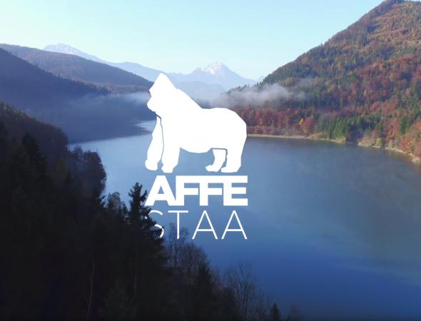 AFFESTAA 2017